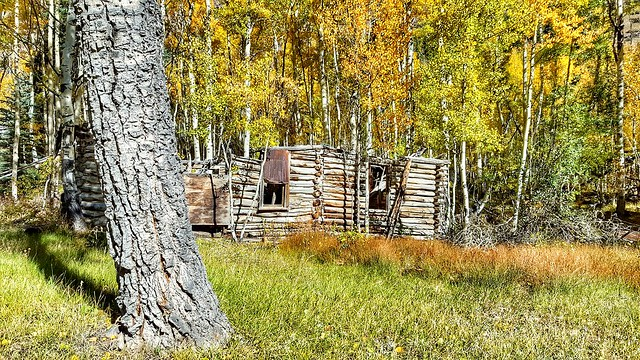 Abandoned cabin, Alpine Loop, Colorado