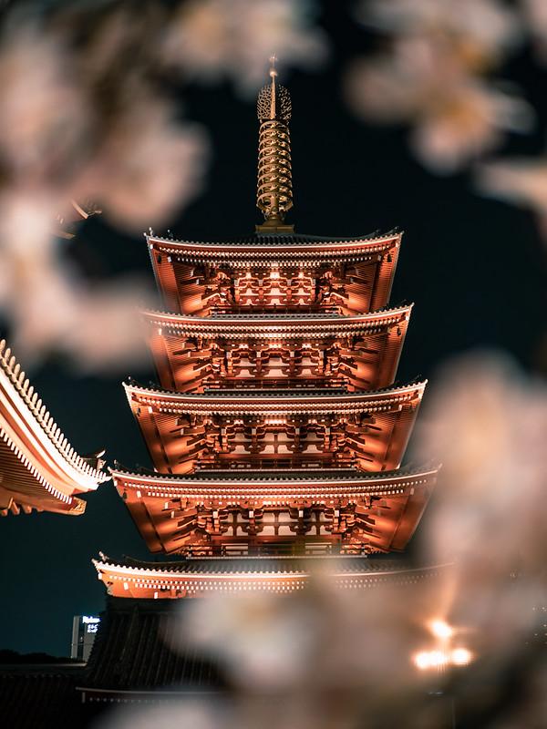 淺草寺五重塔|東京 Tokyo