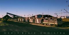 Texas Utilities E23B 2304, loading coal on Texas Utilities' Monticello, TX  lignite railroad, November 11, 1999
