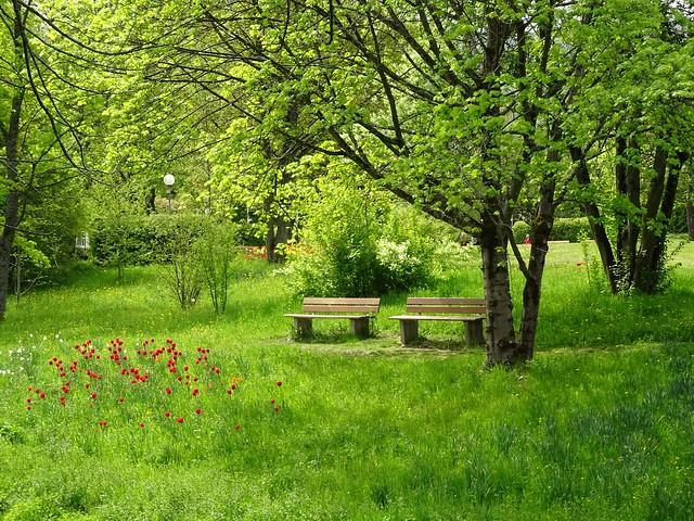 Springtime 💕