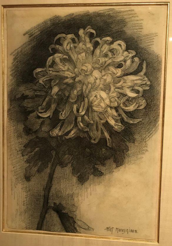 IMG_0243PietMondriaanChrysantBloemSchuinNaarRechtsPotloodOpPapier1908-1909