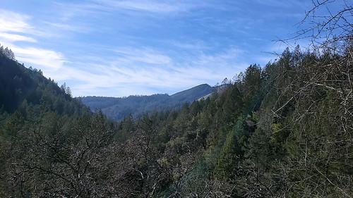 kenwood california sonomacalifornia stevenpmoreno valleyofpinetrees nature stevenmorenospix2019 northerncalifornia outdoors bluesky phonephotography