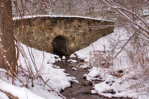 Snowy Bridge, 2019-02 | by Savanni D'Gerinel