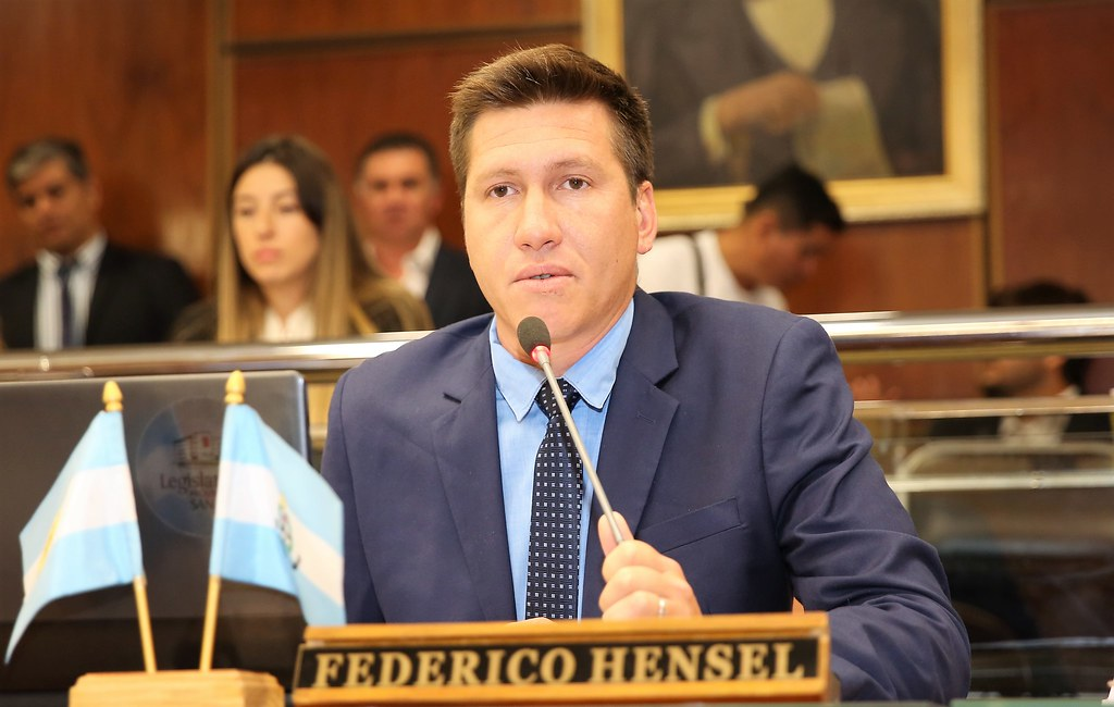 Resultado de imagen para federico hensel diputado