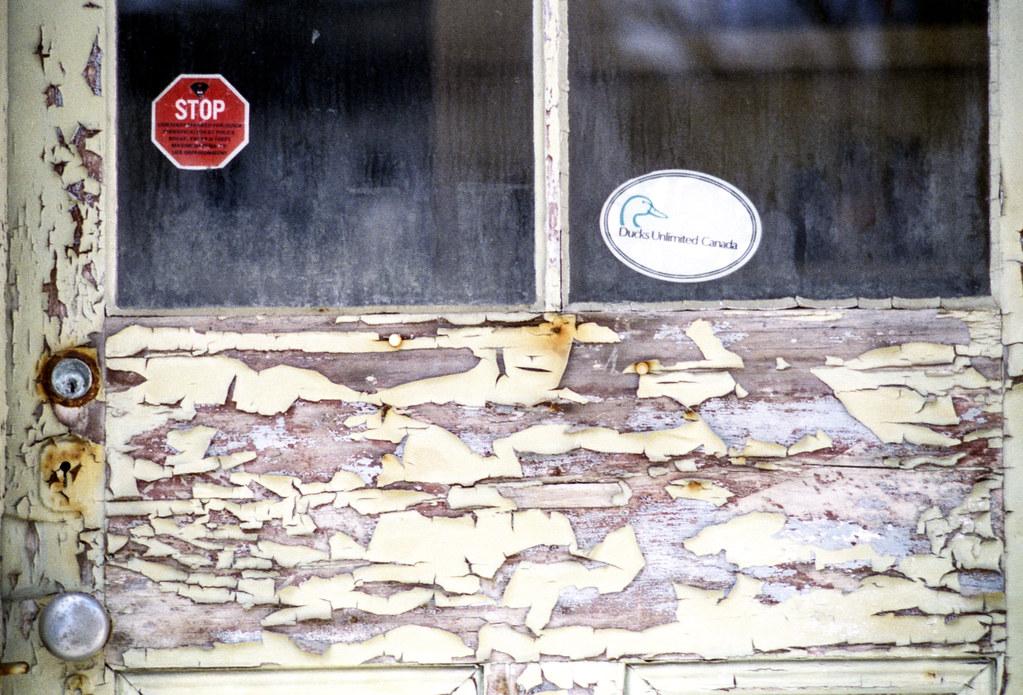 Peeling Paint on the Door II