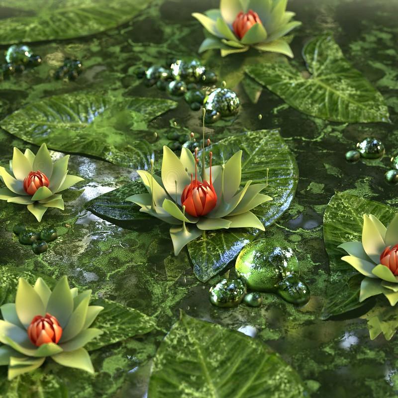 Обои кувшинка, лотос, цветок, зеленый картинки на рабочий стол, фото скачать бесплатно