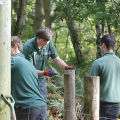 Box strainer repairs at Snelsmore (c) A R Wallington 2018