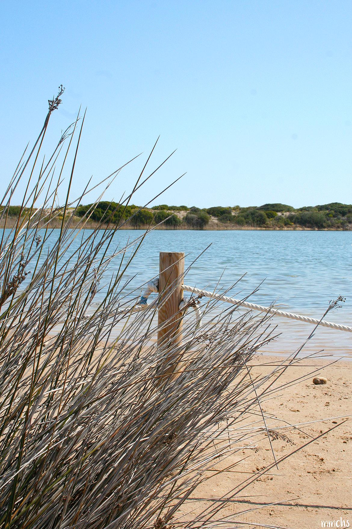 lago de Pujol la Dehesa el Saler