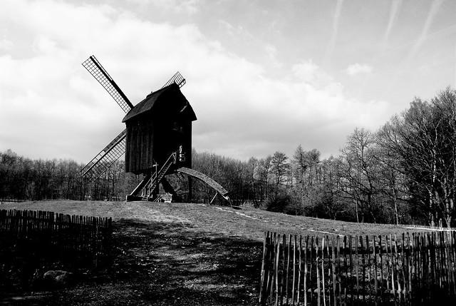 molino del viento