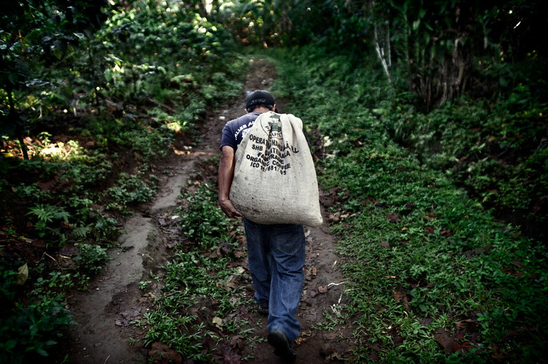 Miquel Guarchaj, Aldea Xojola, Guatemala