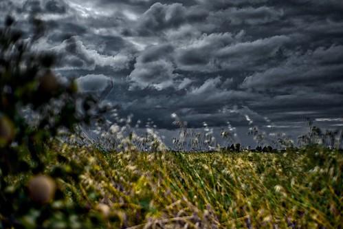 Dark skies   by Phancurio