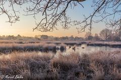 Terhorst winter