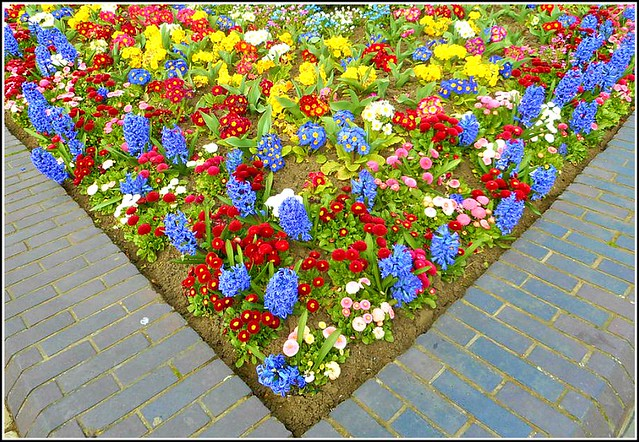 Triangular Shaped Flower-Bed...