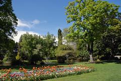 Queenstown Gardens_2018 10 31_3960