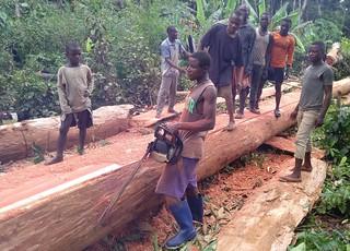 Mbole bridge work_is it straight? copy | by teresehart