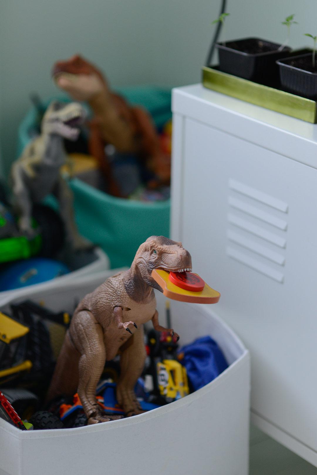 Rawwwr! Dinos