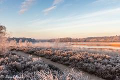 Plas terhorst winter