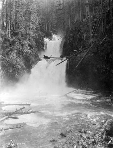 Cedar Falls, 1917 | by Seattle Municipal Archives