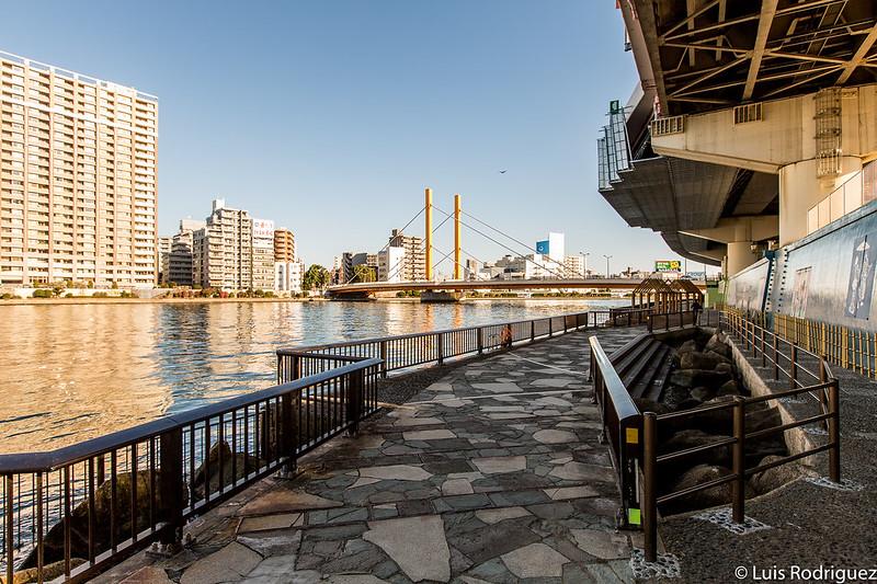 Vistas del río Sumida desde uno de los extremos del parque Hamacho