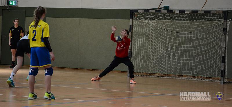 20190406 Laager SV 03 Handball wJD - SV Eintracht Rostock (47).jpg