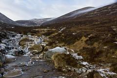 Cold Highland Mists