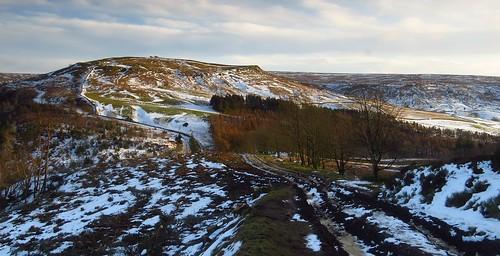 Winter Walk | by trev.pix