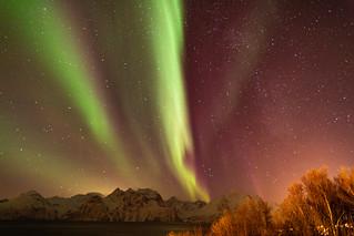 Northern Lights over Lyngen Alps