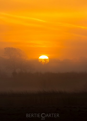 sunrise yellow layers mist sussex colourful mood landscapes landscape
