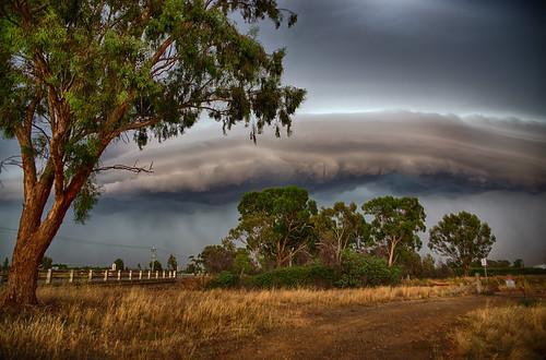storm clouds shepparton sky tree