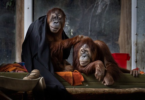 Family portrait | by rick miller foto