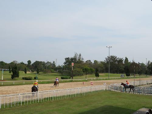 チェンマイ競馬場の走路に馬が入ってくる