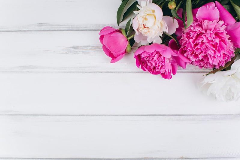 Обои цветы, розовые, white, белые, wood, pink, flowers, пионы, peonies картинки на рабочий стол, раздел цветы - скачать