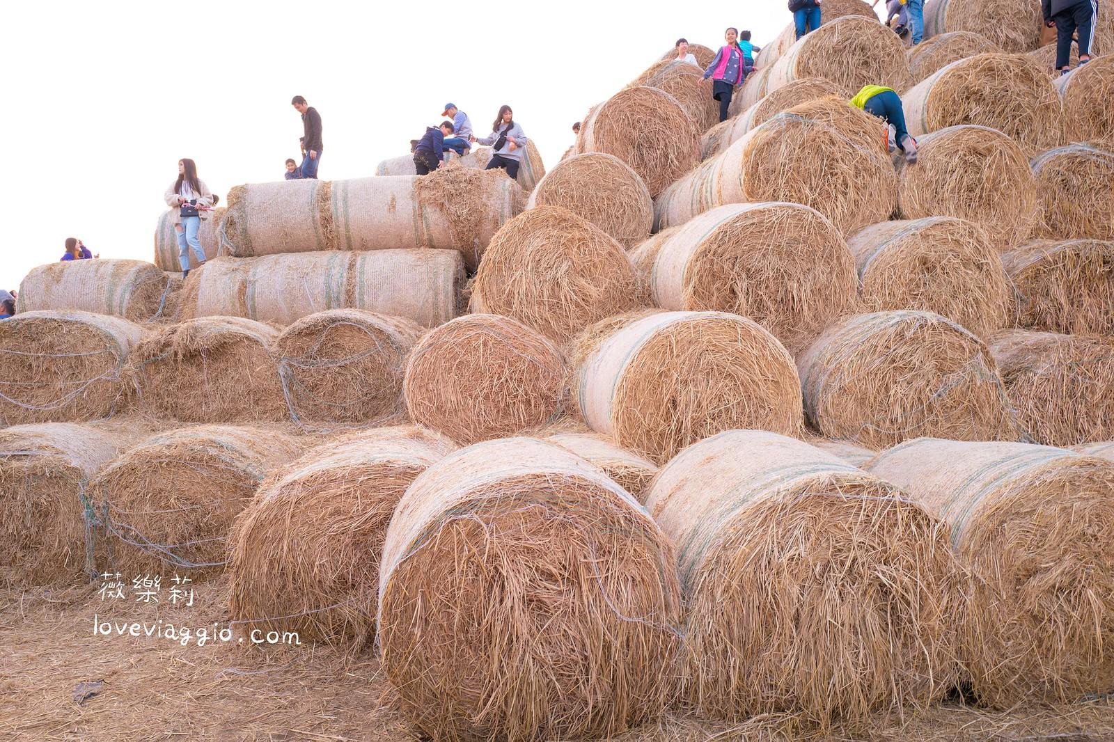 【雲林 Yunlin】虎尾巨大稻草捲。大小朋友的遊樂場 @薇樂莉 Love Viaggio | 旅行.生活.攝影
