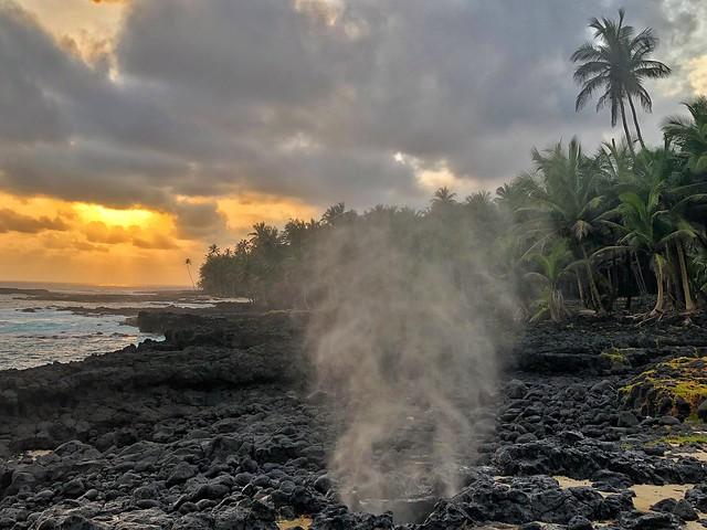 Bufón en la isla de Rolas (Santo Tomé y Príncipe)