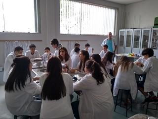 Laboratório de Química - 1ª série E.M. (fev/2019)