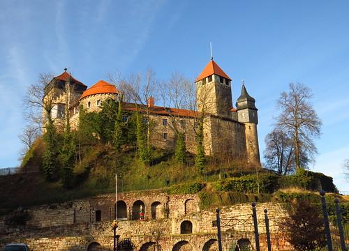 outdoor nature burg schlos castle thuringia thüringen landscape landschaft germany germancute deutschland tree baum