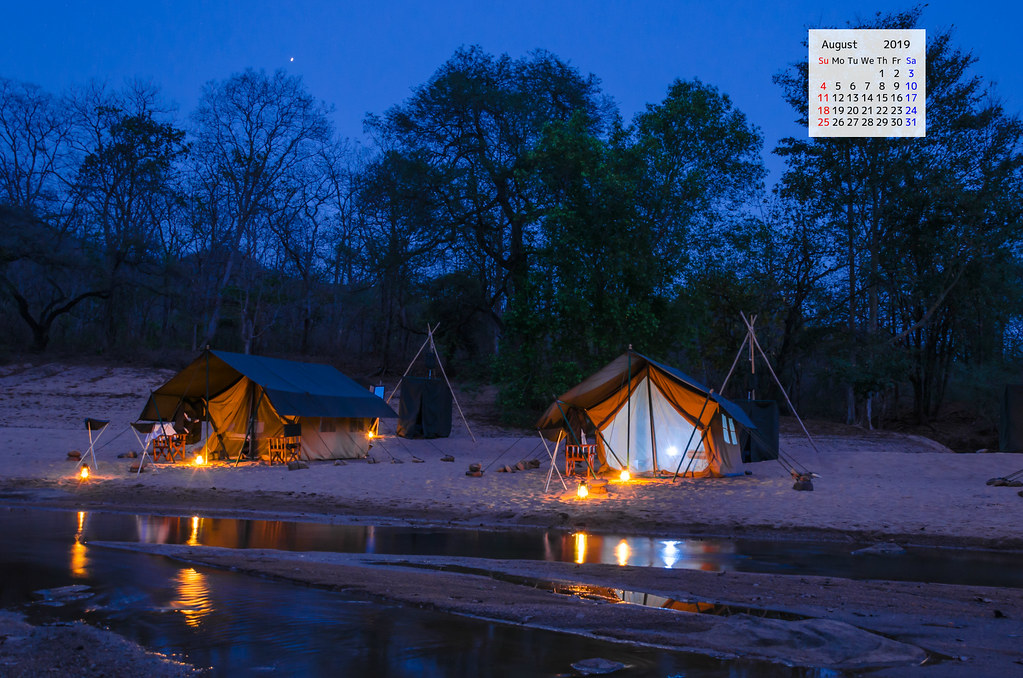 Free download August 2019 Wallpaper calendar night camp Satpura National Park Madhya Pradesh India