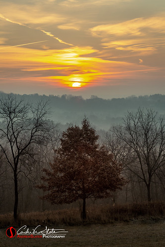 clouds fall fog landscape mist nature outdoors retzernaturecenter sunrise tree winter canon 5dmarkiii leaves noleaves hike waukesha wisconsin discoverwisconsin travelwisconsin morning