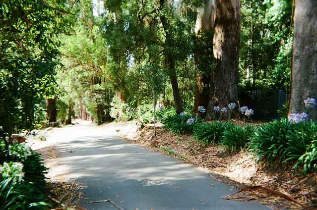 Dickens Road (photo 2)