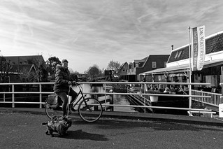 Walking Two Dogs On A Bike, Experience It In Heeg! | by Alfred Grupstra