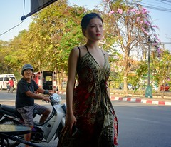 oriental young lady