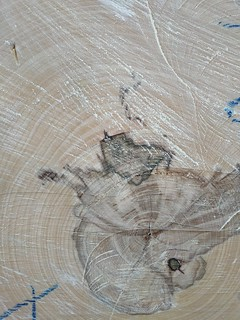 Wood texture #04   by texturepalace