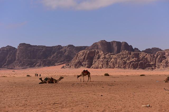 Wadi Rum Desert, Jordan, January 2018 831