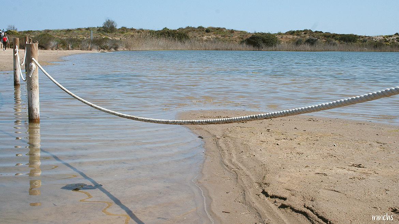 el lago de la Dehesa en el Saler Valencia