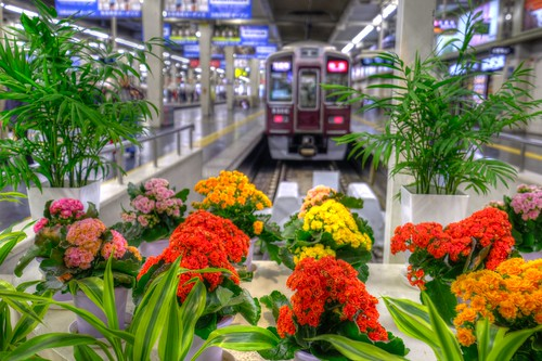 03-04-2019 Osaka-Umeda Station (1)