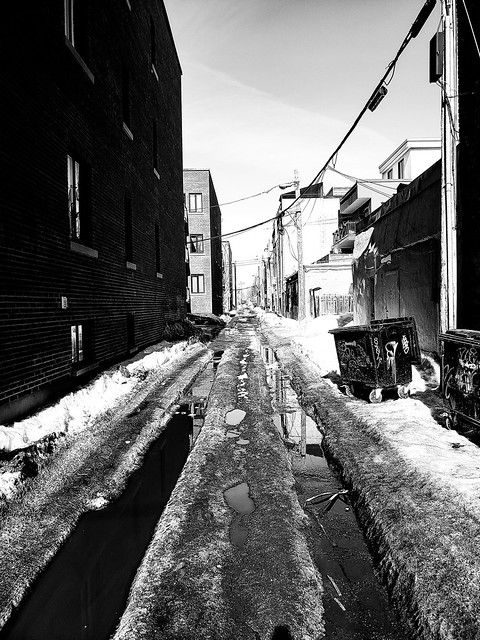Plateau Alleyway (Montreal)