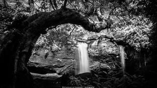 Waterfall in Summer | by terkhomson