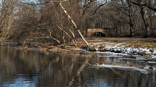 By Muddy River in Winter B | by dMaculate