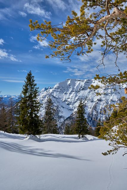 Beautiful Nature - Tyrol, Austria
