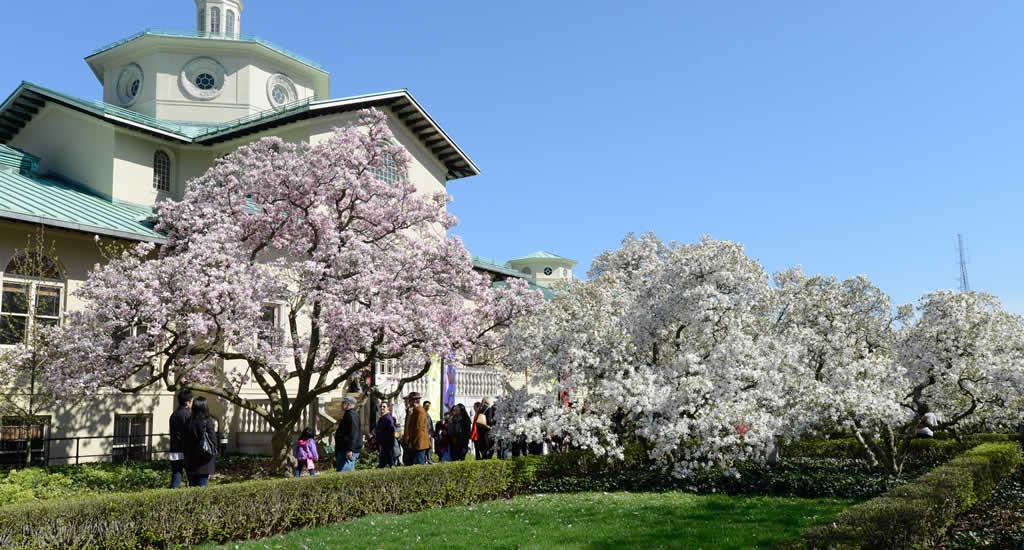 Brooklyn Botanic Garden (foto met dank aan Julienne Schaer) | Mooistestedentrips.nl